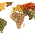 インドのスパイスと菜食主義、医食同源について