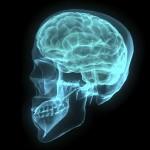 ADHDの僕が、医師のつくった「頭の良さ」テストをやった結果